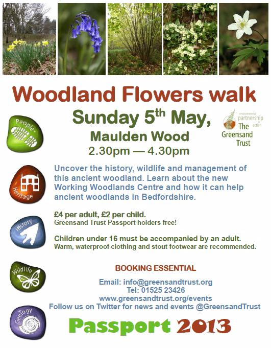 Woodland flowers walk - 5th May 2013
