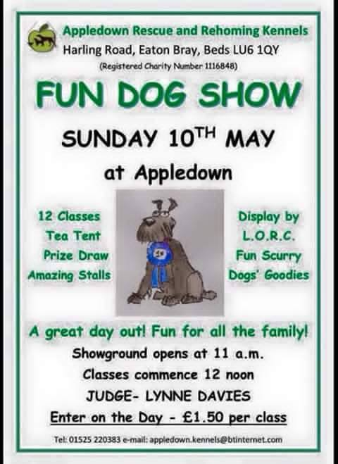 Appledown Rescue - Fun Dog Day