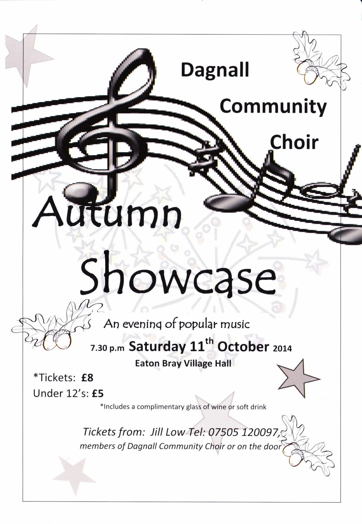 Dagnall Community Choir, 11 Oct 2014